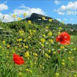 May 2013 Calendar Template